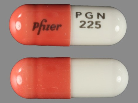 Pfizer PGN 225: (0071-1019) Lyrica 225 mg Oral Capsule by Rebel Distributors Corp
