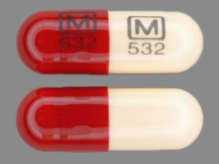 M 532: (0406-0532) Apap 500 mg / Oxycodone Hydrochloride 5 mg Oral Capsule by Mallinckrodt, Inc.