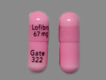 Lofibra 67 mg Gate 322: (57844-322) Lofibra 67 mg Oral Capsule by Teva Select Brands